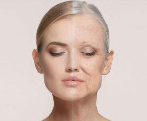 غذاهای پیر کننده در سالمندان