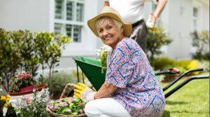 سرگرمی سالمندان و باغبانی