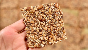 فواید دانه های گیاهی برای سلامتی