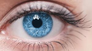 ژن چشم آبی